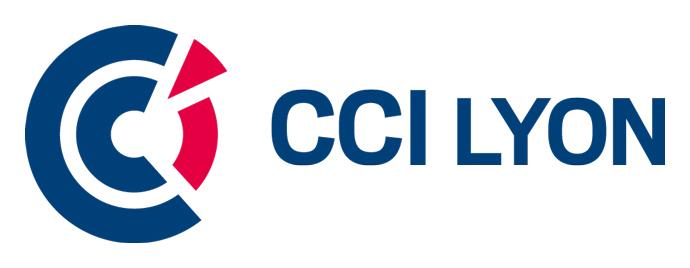 CCI-Lyon-logQ